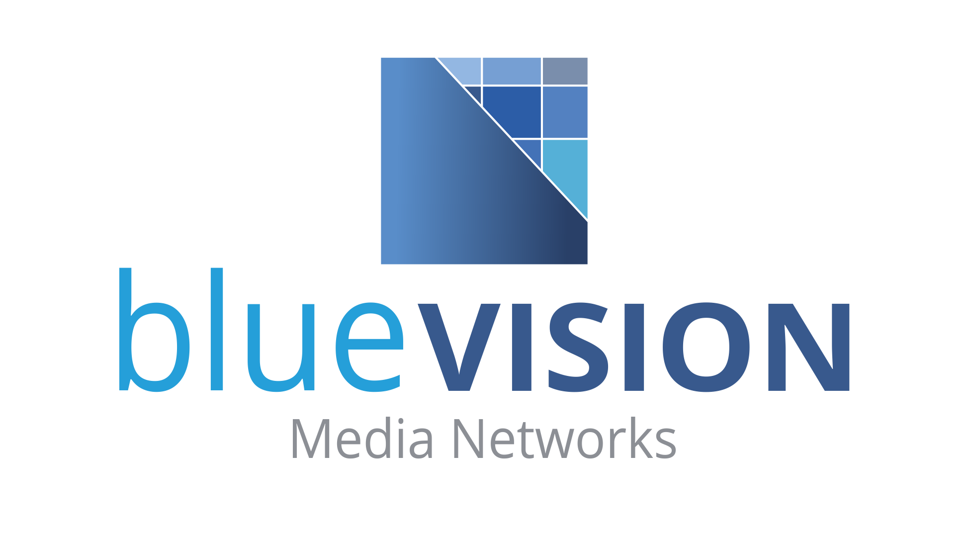 bluevision-networks.de